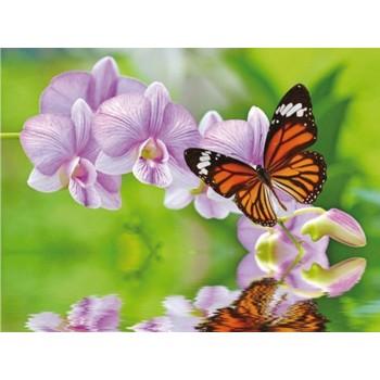 Алмазная мозаика 15х20 БАБОЧКА НА ВЕТКЕ (12 цветов)